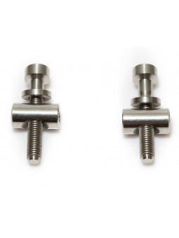 Thomson: 2 screws/bolts in titanium