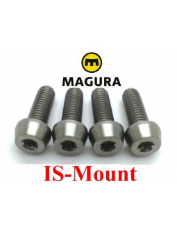MAGURA: 4 screws for IS caliper