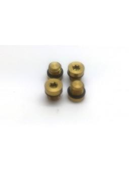 FORMULA: 2 Bleed screws in Titanium
