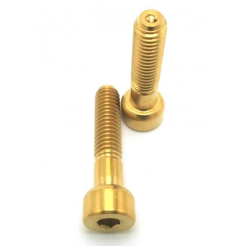 ROCKSHOCK Reverb B1: 2 screws for seat posts