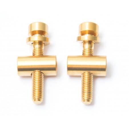 Thomson: 2 screws/bolts in titanium