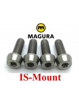 MAGURA: 4 screws for IS caliper