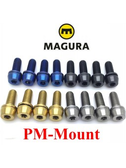 MAGURA: 4 screws for PM caliper
